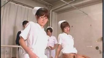 Japanese people Apprentice Nurses Proper training and Perform