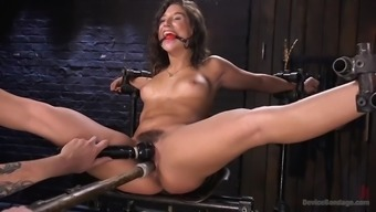 fucked right up mad immobilizes ripe abella threat and despair her furry cherry